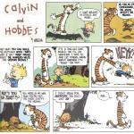 Calvin 01