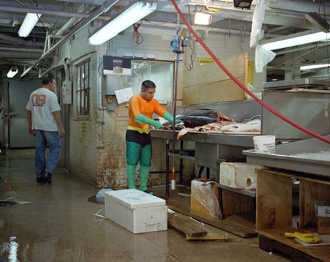 JUVENTINO ROSAS from the State of Mexico works in a fish market in New YorkHe Sends 400 dollars a week